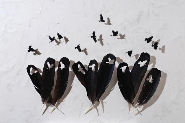 Чудеса из перьев птиц. Арт-проект Криса Мейнарда