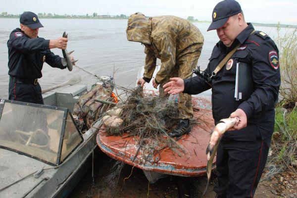 уголовная ответственность за ловлю рыбы сетями