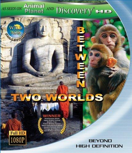 Дикая Азия. Меж двух миров / Wild Asia. Between Two Worlds (1998)