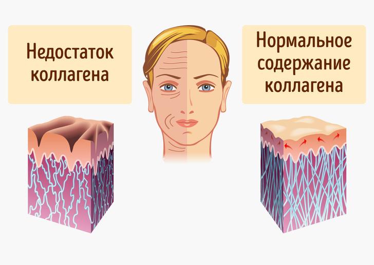 10 продуктов с коллагеном, которые замедляют старение кожи