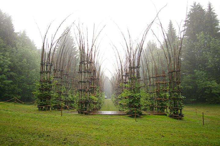 собор из деревьев джулиано маури (4)