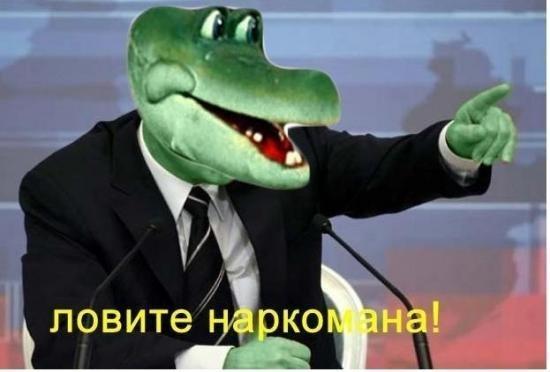 Крокодил Гена сообщает