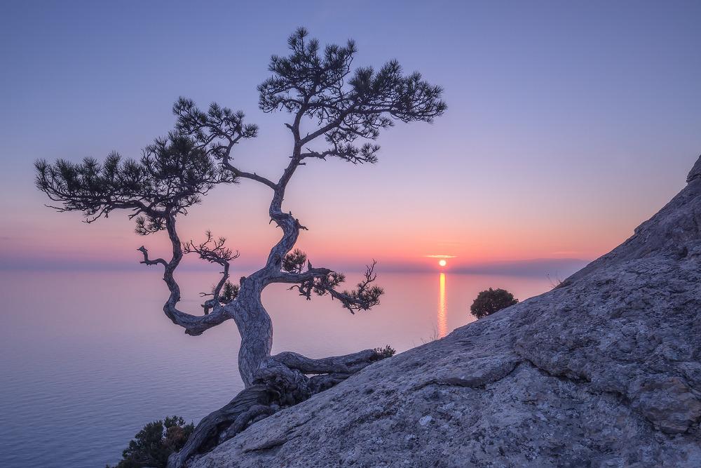 Невероятно красивые фото природы!