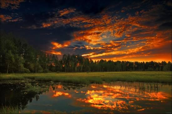 отражение в воде природа 11 (550x366, 171Kb)