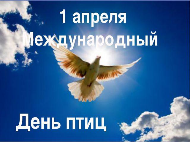 Праздники 1 апреля  - Международный День птиц и Дарья Грязная - приметы и обряды