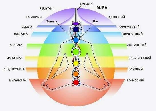 Семь энергетических центров или чакры