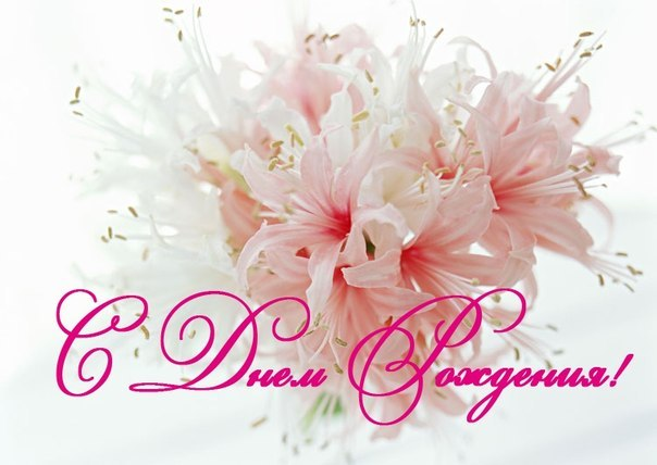 Открытки с днём рождения с лилиями