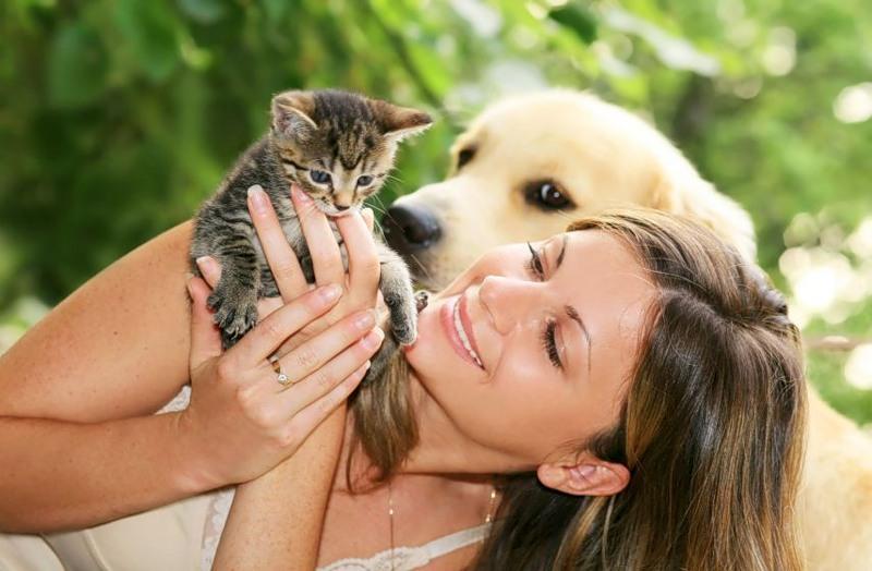 http://img-fotki.yandex.ru/get/4518/81454286.285/0_809dd_2fd21714_XL.jpg