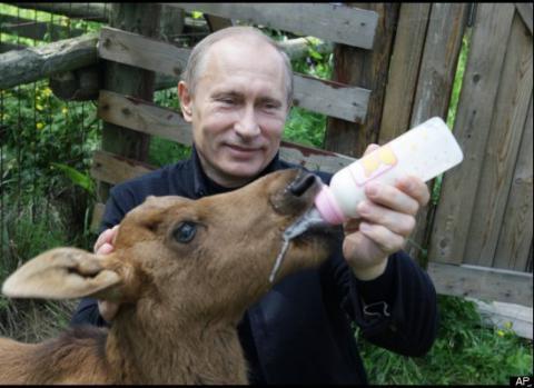 Путин отправится в экспедицию раньше чем вы думаете