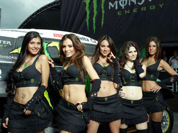Девушки из Monster Energy (44 фото)фото 15