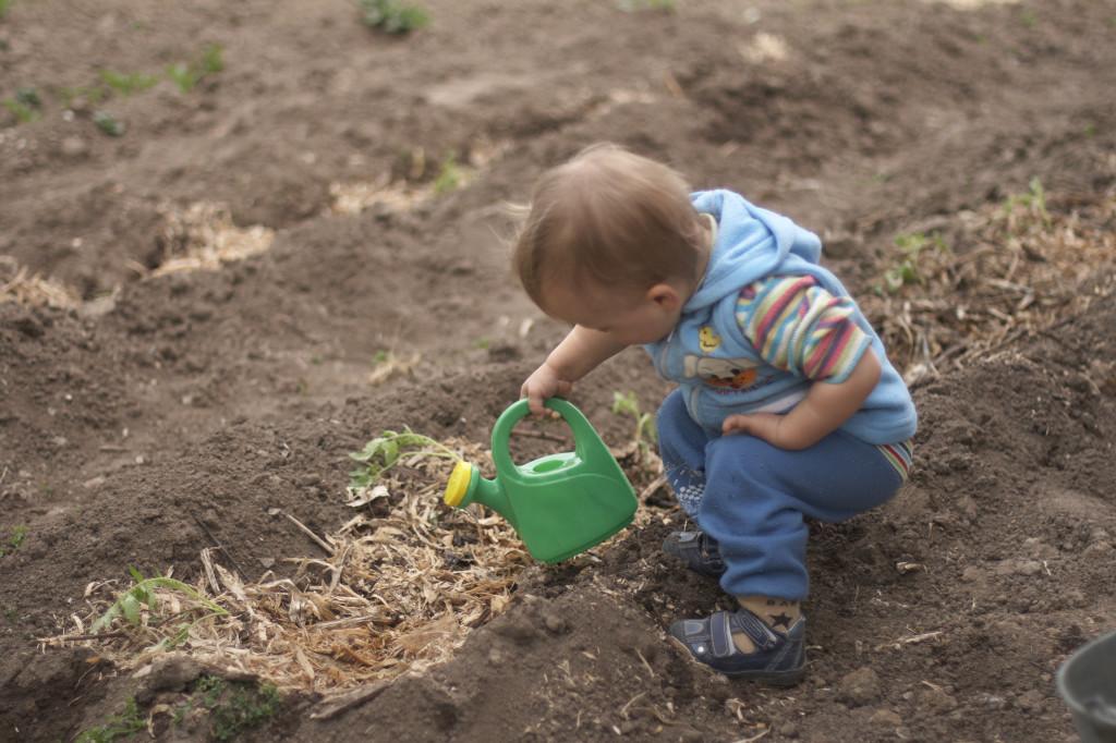 ребёнок поливает огород