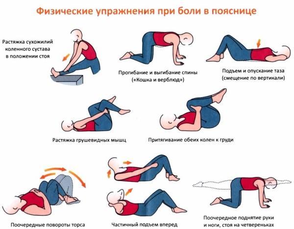 Упражнения для здоровья поясничного отдела