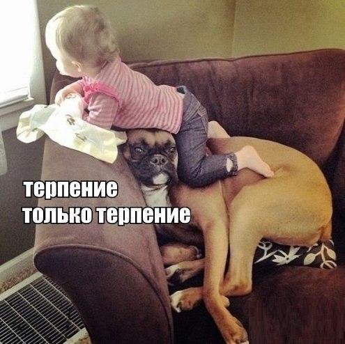 ПОЗИТИВ НА ВЕСЬ ДЕНЬ (4) !!!