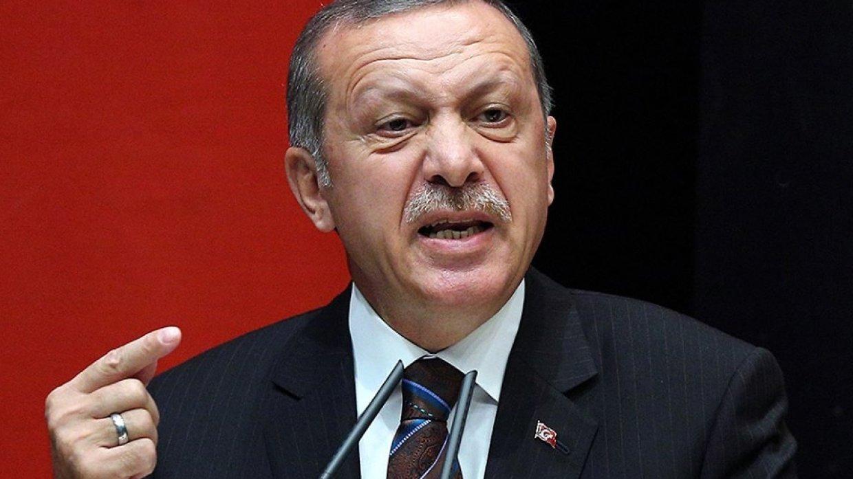 Сирия: Эрдоган просит США и Европу поддержать усилия по возвращению беженцев