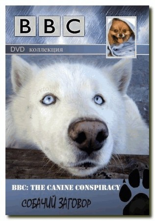 BBC — Заговор собак