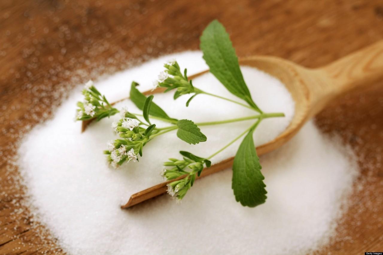 Стевия. Сахарную траву для диабетиков выращиваем сами!