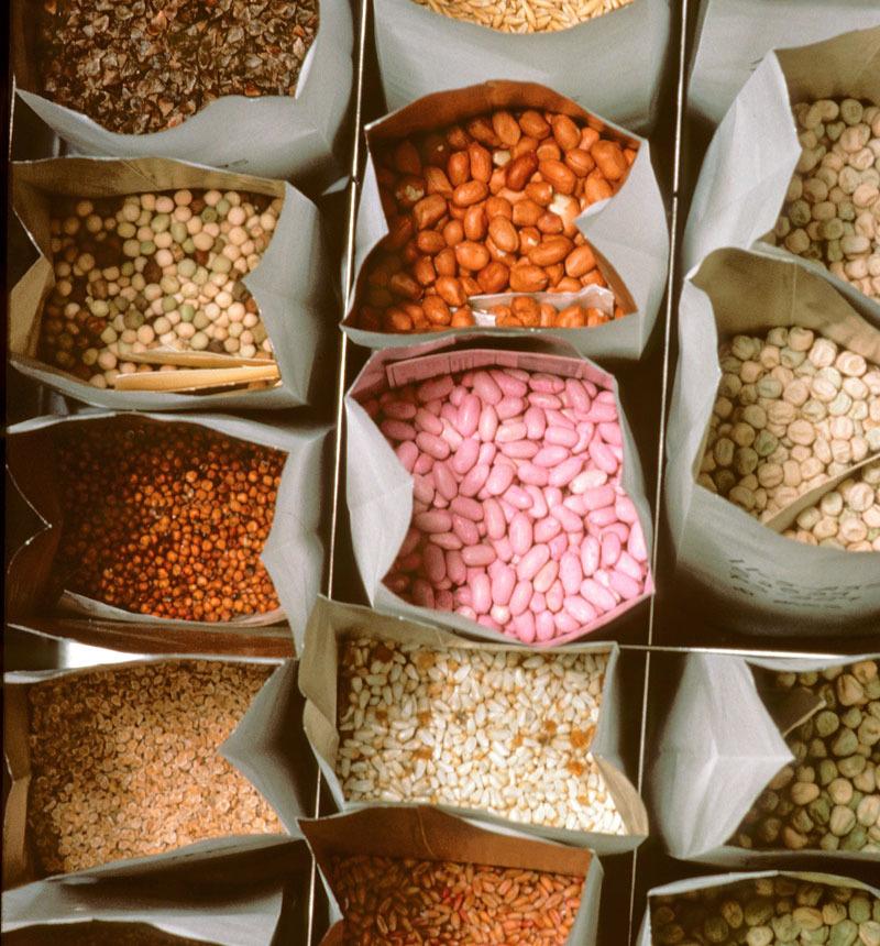 Как создать свой собственный банк семян