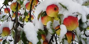 Ноябрь: благоприятные и неблагоприятные дни