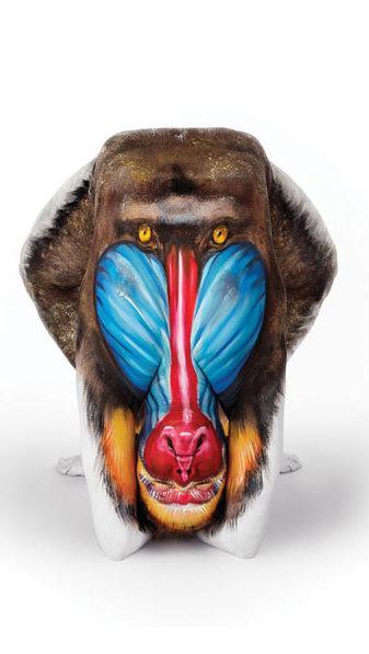 1. Орангутан боди-арт, художник, человек-змея