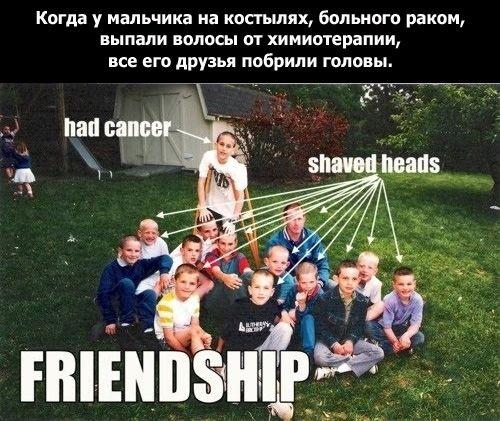 Что такое дружба