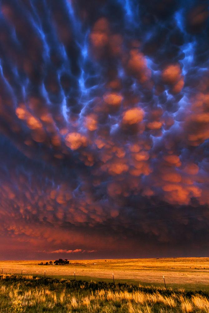Мощное великолепие природы... Фотограф Brad Hannon
