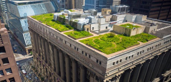 зеленые крыши Копенгаген: : Зеленые крыши, сады на крыше