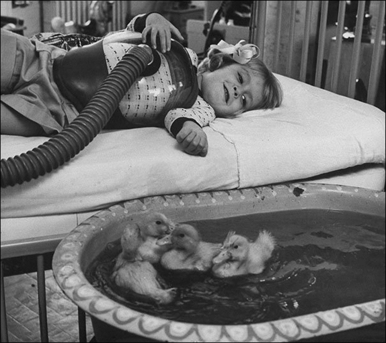 Использование животных в терапии, 1956 Историческая фотография, история, факты