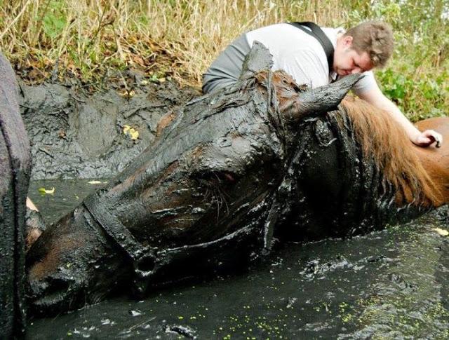 Крохотный грязевой канал пра…