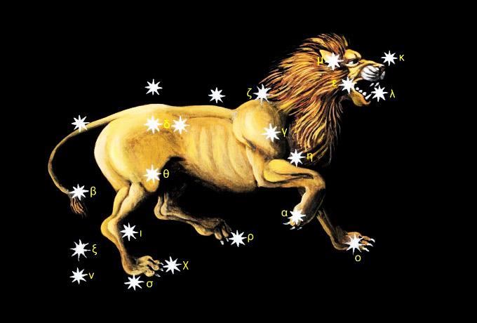 Гороскоп женщи  лев год лошади