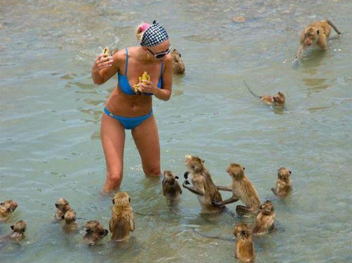 Боги пляжного сезона: 20 лучших снимков о том, как кто провел лето