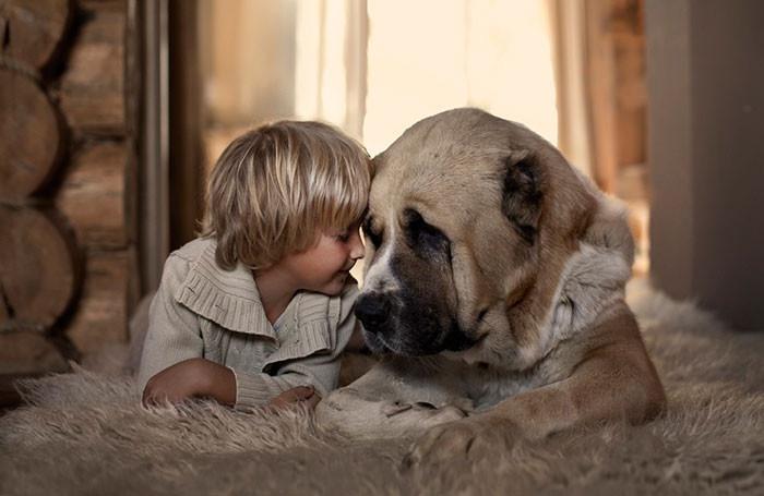Лучшие друзья  дружба, ребенок, собака