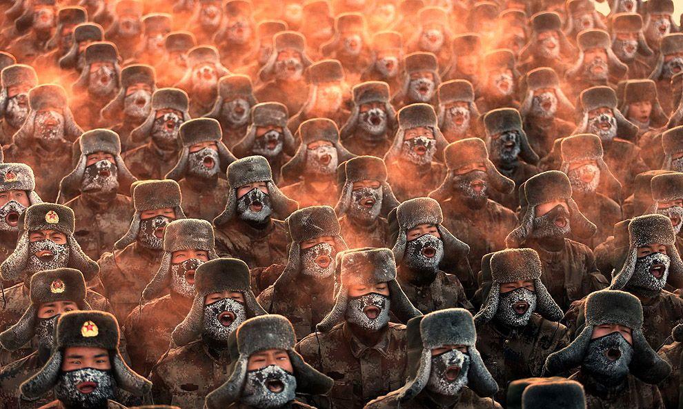 Лучшие снимки 2013 года по версии Getty Images