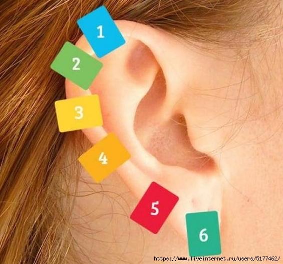 Китайский прием: волшебные точки вашего уха излечат от 100 болезней!