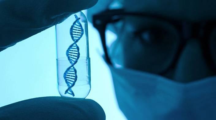 Генетики доказали, что умные люди обречены на вымирание