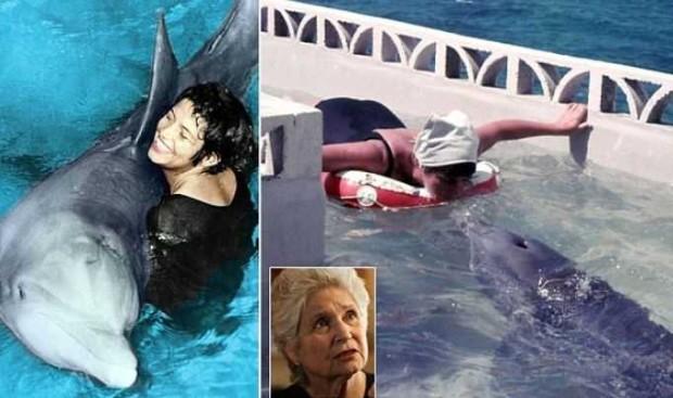 Роман с дельфином