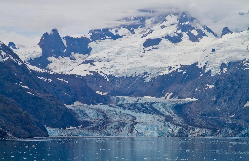 Ледник Джонса Хопкинса