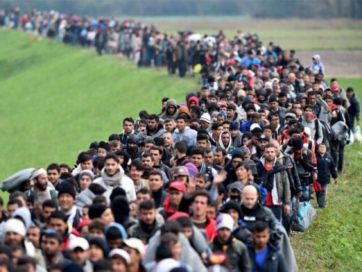 Путин предложил решение миграционного кризиса в Европе