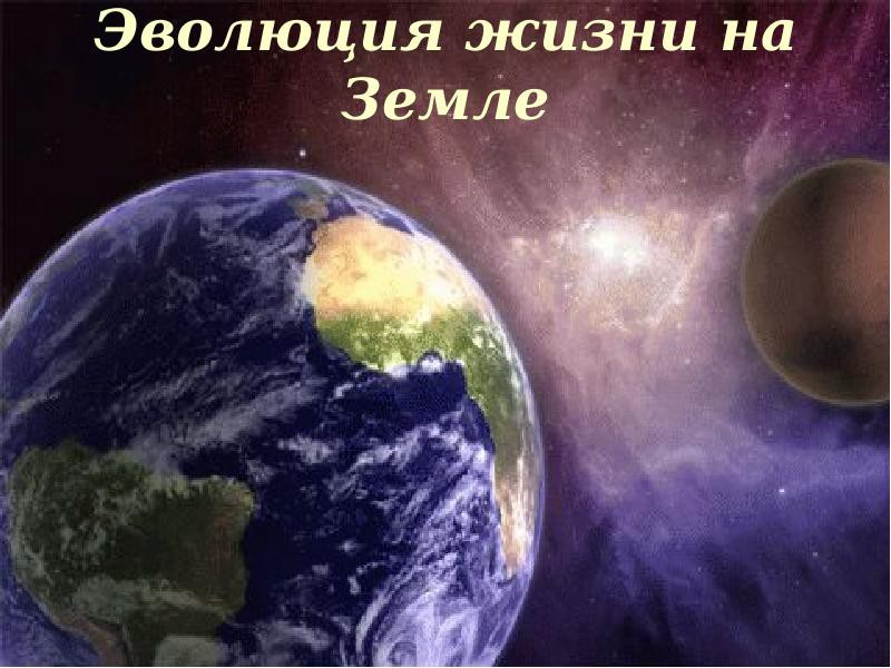 Удивительные свидетельства эволюции жизни на Земле. Вопрос верующим: а как церковь объясняет эти научные факты?