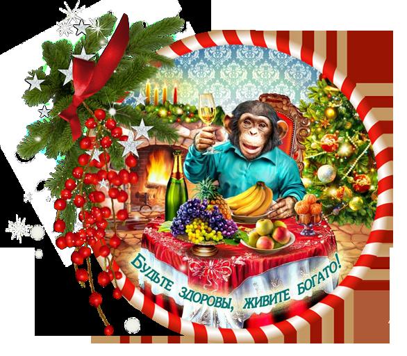 год обезьянки  (586x512, 526Kb)