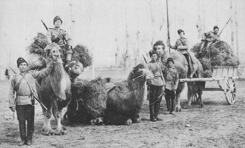 Интересный случай на русско-афганской границе во времена Царской России