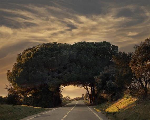 Алентежу португалия природа красота