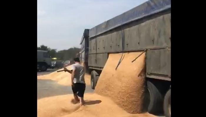 Шофер грузовика высыпал зерно на дорогу назло гаишникам