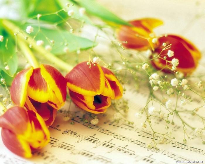 """6 марта в концертном зале ДШИ пройдёт праздничный концерт """"Весна идет!"""" . """" Информационный сайт города Гусева"""