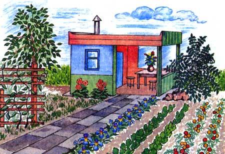 Душистая изгородь на дачном участке, советы специалиста