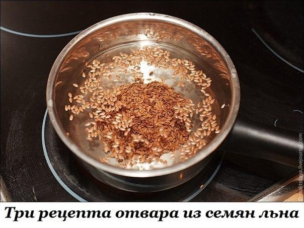 ТРИ РЕЦЕПТА ОТВАРА ИЗ СЕМЯН ЛЬНА
