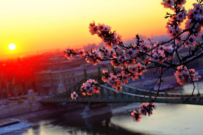 Невероятные фотографии Будапешта