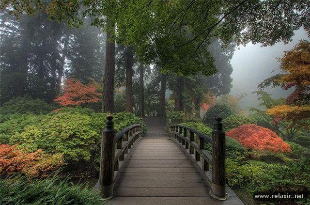 Japan-Park-009