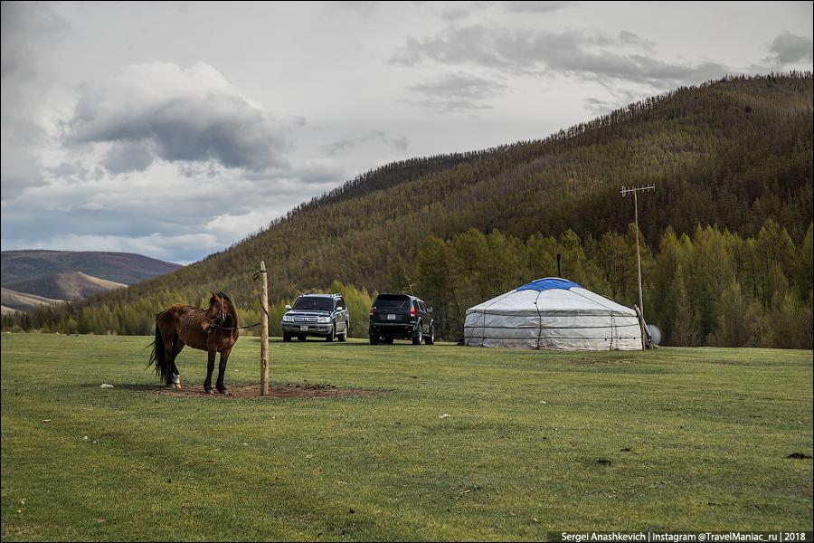 Как выглядят богатые монголы