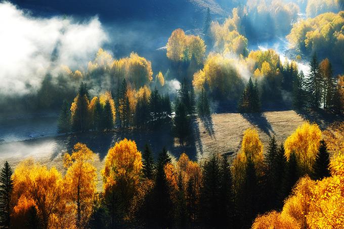 Туман в лесах у озера Канас, китайский Алтай