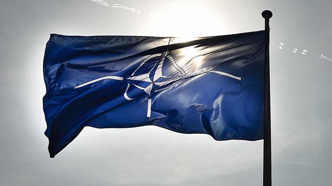 В Сталинграде появится база НАТО